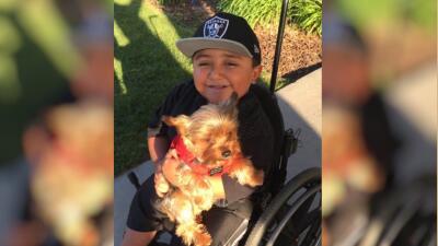 """""""Buddy"""" ayuda a Juanito a levantar su ánimo después de las cirugías."""