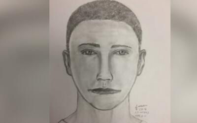 Revelan el retrato hablado del sospechoso de robar a una mujer de 62 año...