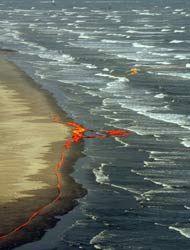 Plan de BP restó importancia a posibilidad de derrame, el peor en década...