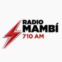 Logo miami Radio Mambi 710 AM