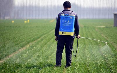 Residuos de pesticidas en los alimentos pueden ser potencialmente tóxicos