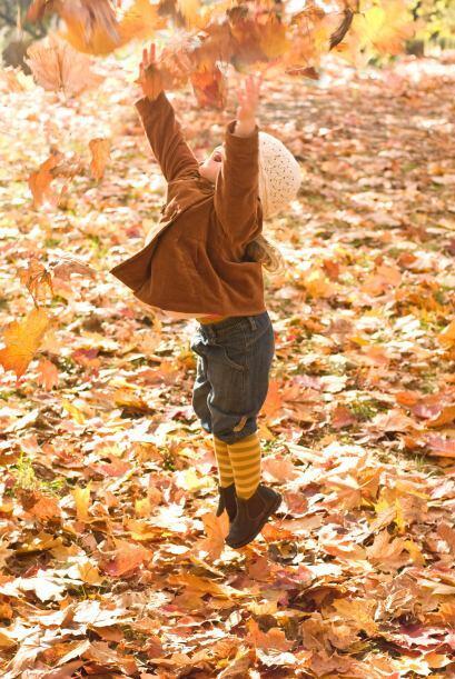 ¡Atrapen las hojas! Si quieres pasar una tarde divertida con tu hijo y s...