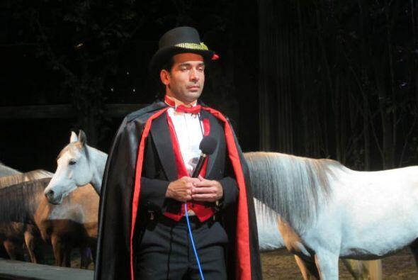 Dani Cavalia