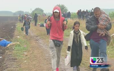 Refugiados sirios llegaron a Dallas