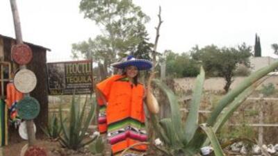 Nely Islas en Mexico DF