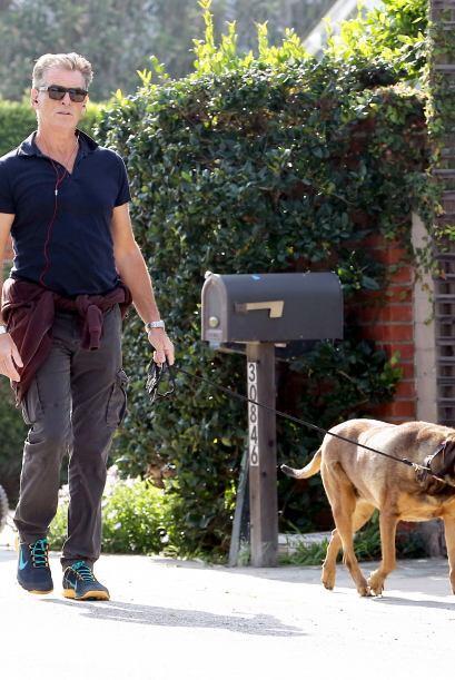 Pierce Brosnan decidió que hacía un bonito día para sacar a su perro.