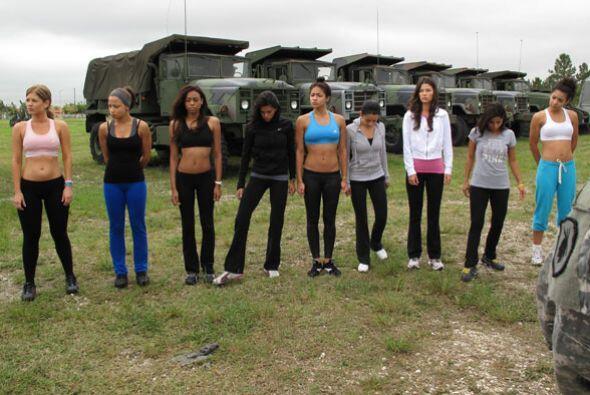 Las bellas llegaron a una zona de entrenamiento para hacer una prueba en...