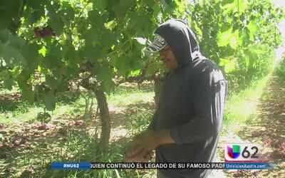 Reportan condiciones de vivienda de agricultores en Texas