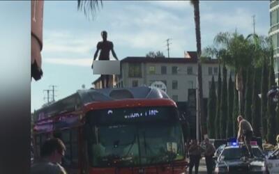Un hombre totalmente desnudo se trepó al techo de un autobús en West Hol...