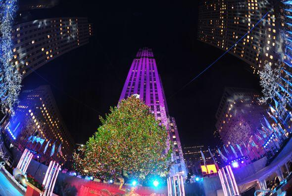 El árbol elegido este año como símbolo de la navidad neoyorquina mide 23...