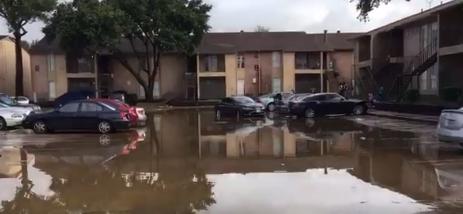 Así amaneció Houston tras precipitaciones torrenciales Screen Shot 2017-...