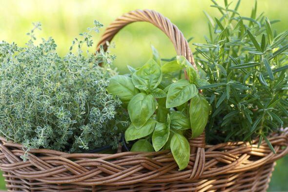 Aromáticas. Si debes elegir una o dos hierbas para condimentar tus plato...
