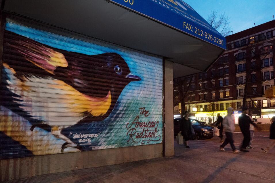 Juez ordena compensación millonaria para grafiteros cuyas obras fueron b...
