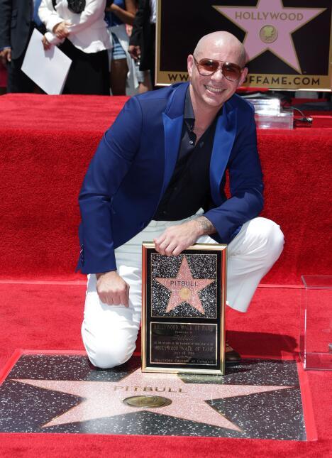 'Pitbull' obtuvo la estrella 2,584.