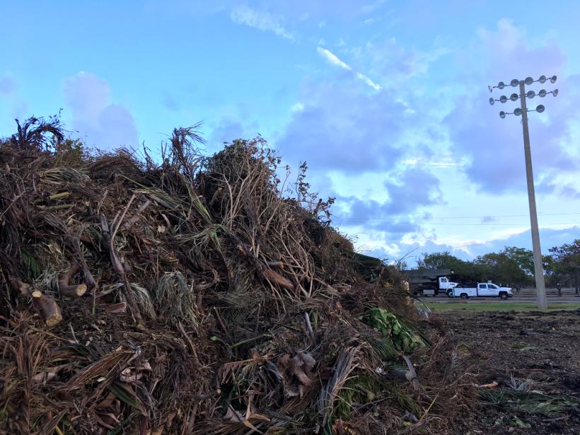¿Qué hacer con todo esto? Florida se enfrenta a las montañas de desechos...
