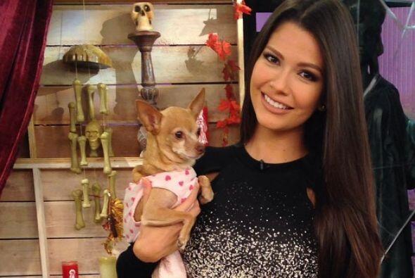Ana Patricia González, quien ya tiene experiencia con Honey Berry, segur...