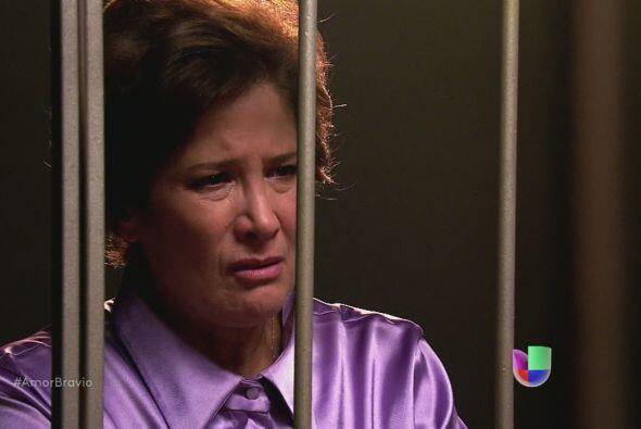 Camila le dice a su madre que Dionisio declaró que nunca trabajó con su...