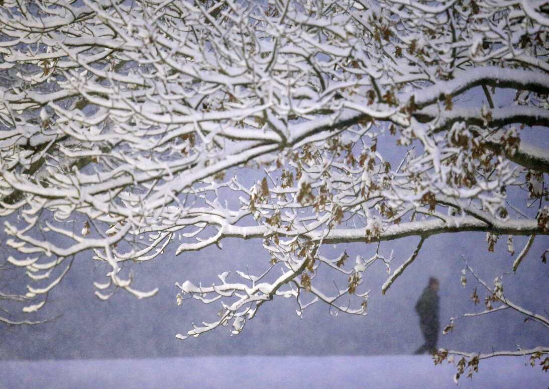 A person walks along the Chestnut Hill Reservoir past snow-covered trees...