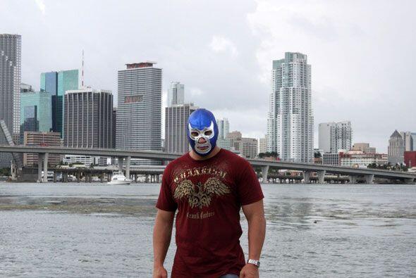 La ciudad de Miami se convertira en su casa por el tiempo que dure la co...