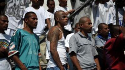 Una de las causas es la guerra entre las pandillas Mara Salvatrucha (MS)...