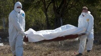 Cuatro jóvenes fueron asesinados de madrugada por un grupo del crimen or...