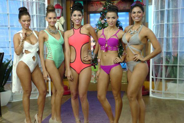 La ex Miss Universo puertorriqueña eligió la casita de Despierta América...