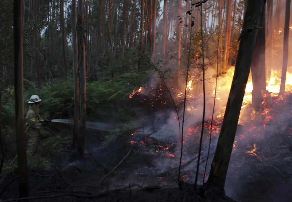Portugal espera ayuda internacional para combatir el descomunal incendio...