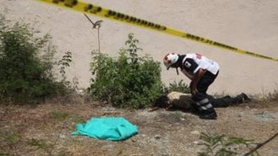 La Procuraduría General de Justicia del Estado, adelantó que el asesinat...