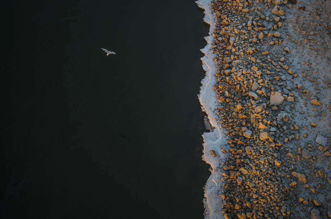 11 imágenes que te harán envidiar a los fotógrafos de la naturaleza 2245...