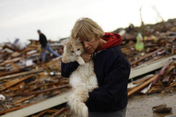 Las catástrofes naturales no hacen distingos y se llevan todo lo que se...