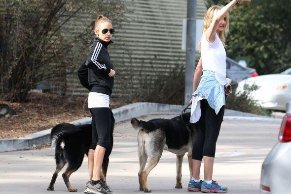 ¡A pasear a su perrito, acompañada de Nicole Richie! Mira aquí los video...