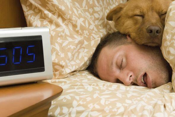 Puede ser que el tamaño de tu almohada sea el problema. Revisa que sea l...