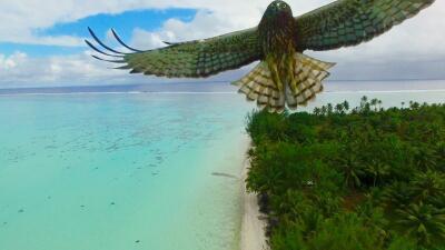 En fotos: La tierra desde el cielo, lo mejor de la red social Dronestagram