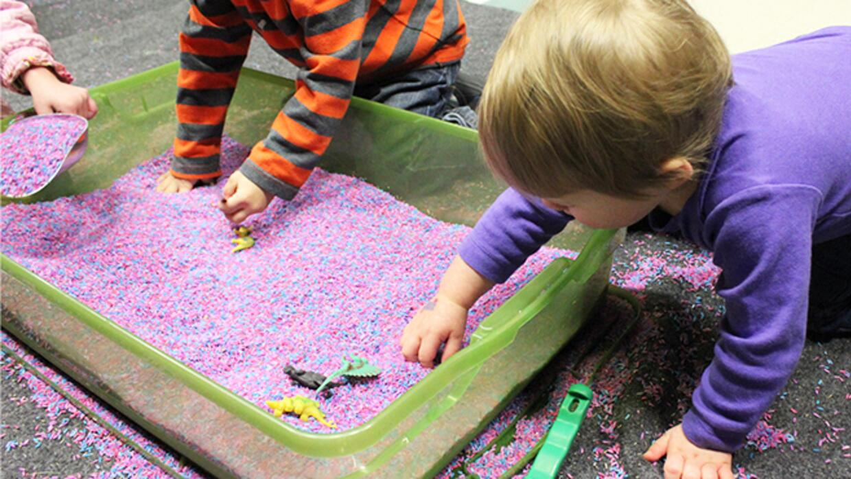 Create sensory bins for children to touch with everyday household items.