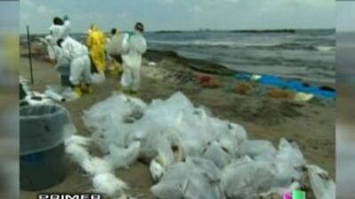 La empresa BP ha acordado indemnizar a trabajadores de limpieza