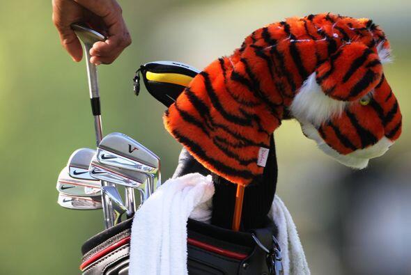 Hay cosas que no han cambiado en el comportamiento de Tiger.