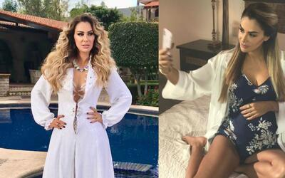 Ninel Conde aparece embarazada en el nuevo video que realizó en Guadalaj...