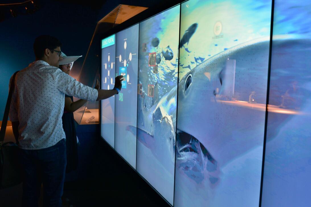 En fotos: una visita por el nuevo museo de la ciencia de Miami 636298760...