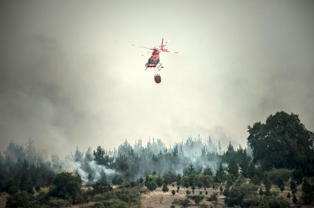 En fotos: el fuego no se detiene en el peor incendio forestal de la hist...