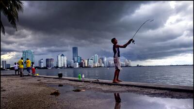 La ciudad más poblada del estado de Florida elegirá a su alcalde el 7 de...