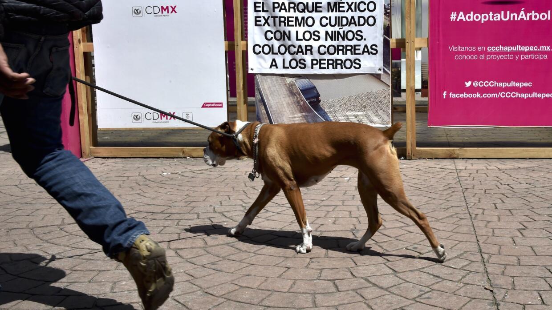 Han puesto carteles de advertencia en plazas y parques de Ciudad de M&ea...