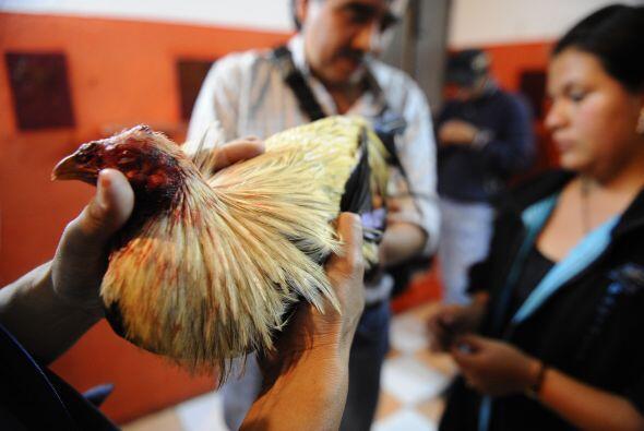 Ante la reciente sugerencia del presidente Rafael Correa de prohibir los...