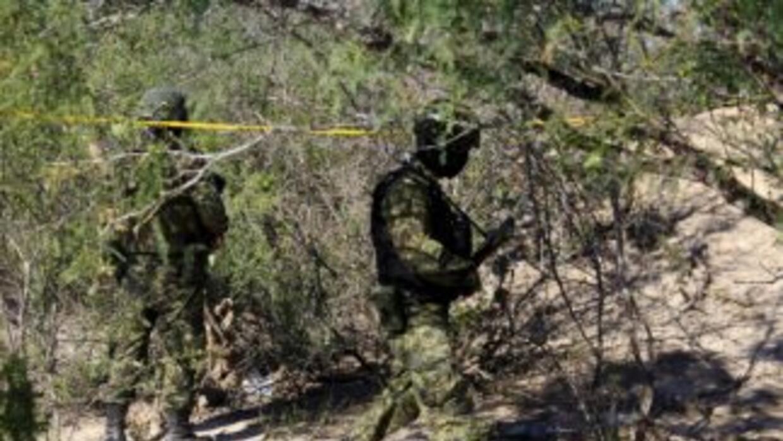 Hallaron marihuana en un cementerio de Tamaulipas.