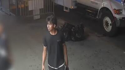 Arrestan al sospechoso de intentar violar a una mujer en un callejón de Brooklyn