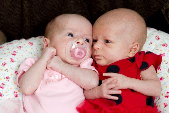 Avery y Darcy son una bebés muy coquetas.