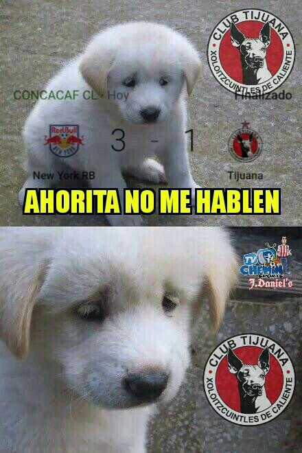 Los memes de la eliminación de  Xolos y Tigres 29196180-724976631225011-...