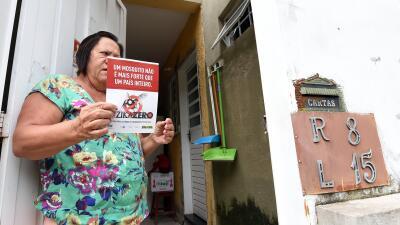 salud zika google brasil
