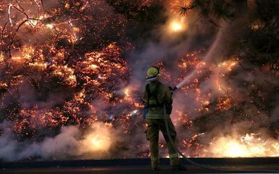 'Los Ángeles en un Minuto': emiten alerta roja por altas temperaturas en...