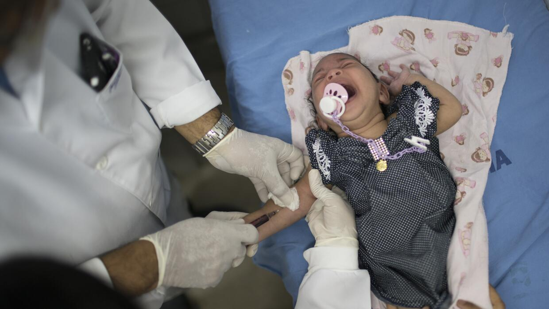 Un doctor le saca sangre a Luana, quien nació con microcefalia, en un ho...