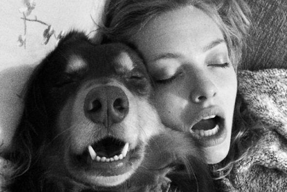 Amanda Seyfried y Finn   La actriz Amanda Seyfried está realmente...